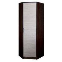 Шкаф угловой глубина 380 Колибри 1 (полки+штанга)